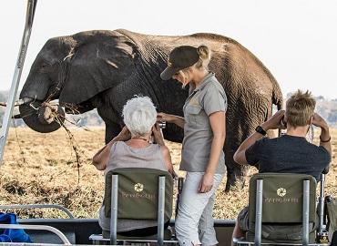 Best of Botswana Photo Safari