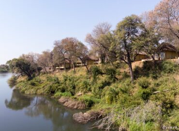 Top 5 Safari Destination in Botswana